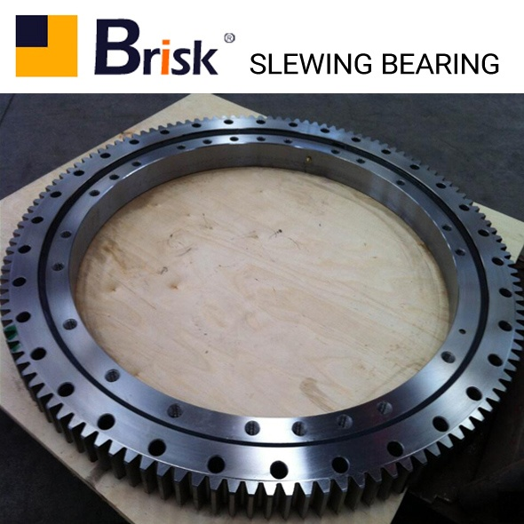 EX60-2 slewing bearing
