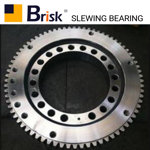 ZX750 slewing bearing