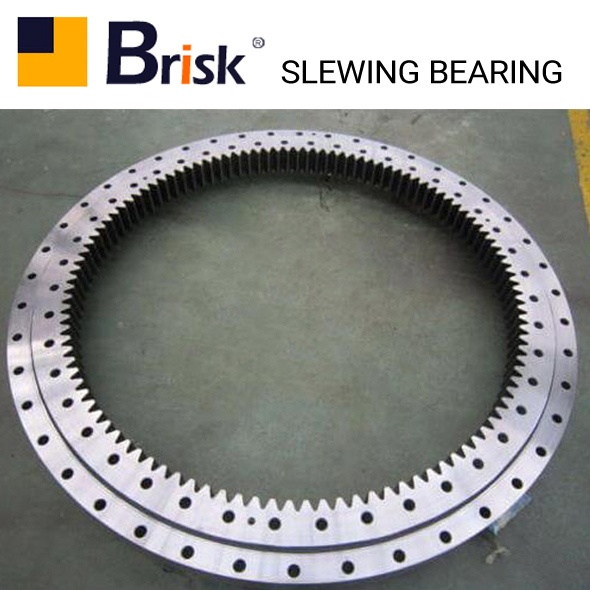 EX110-5 slewing bearing