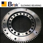 EX100 slewing bearing